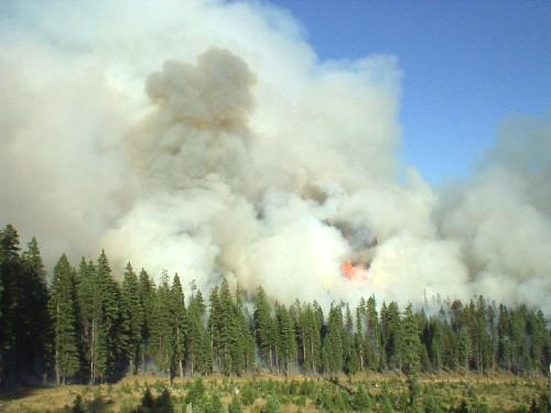 Elko Nevada Weather Fire Information